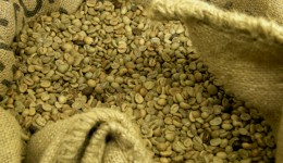 Are green coffee bean supplements worth all the hype?