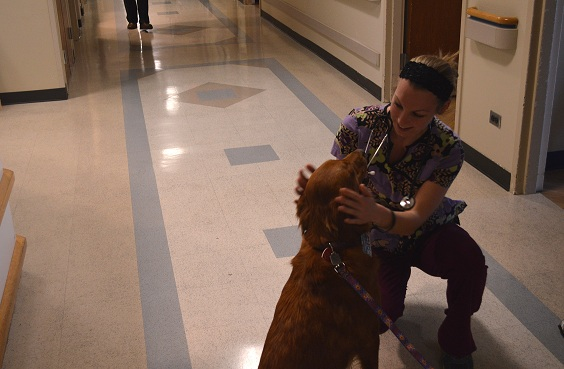 Haley Thomas, nurse at Good Samaritan Hospital, enjoys the visits from the pet therapy dogs each week.