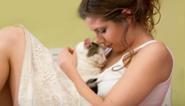 New study may yield cure for cat allergies