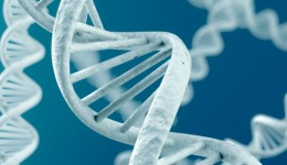 Can your genes predict vitamin D deficiency?