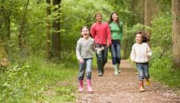 Dangerous uptick in Lyme disease