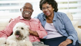 How pets can boost owner's health