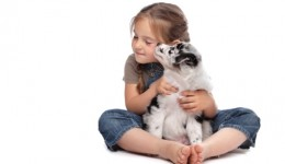 Fido may help autistic kids boost social skills