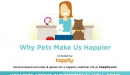 Infographic: How pets make us happier