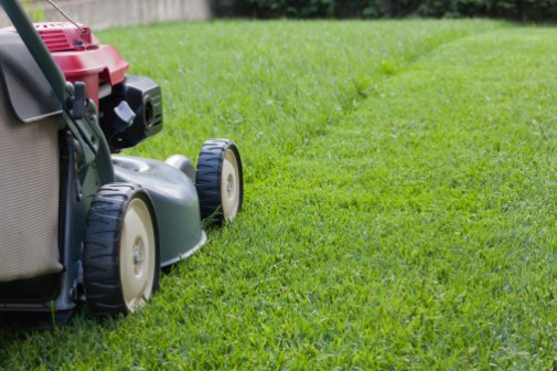 8 tips to stay safe while mowing the lawn