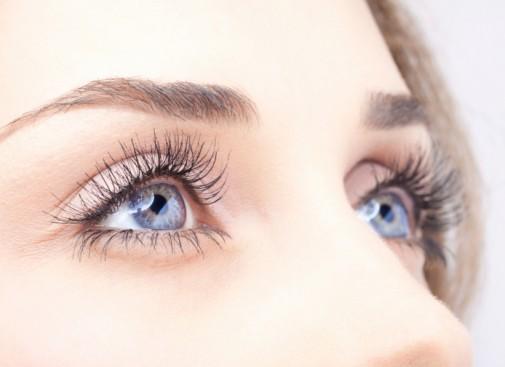 Researchers see eye transplants on the horizon
