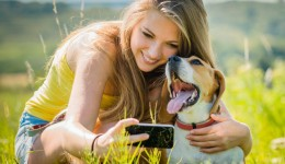 Pet therapy helps reduce anxiety for college students