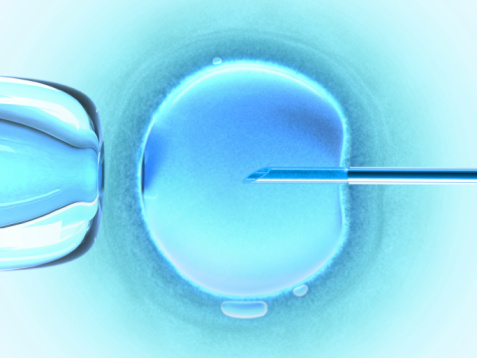 In vitro fertilization more successful than ever