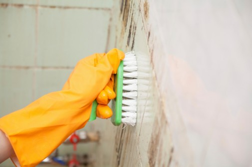 Cleaning with bleach increases risk of flu