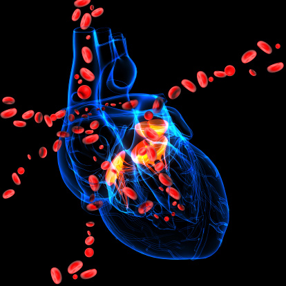 Pediatric doctors help plug leak in adult heart valve