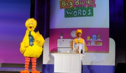 Can 'Sesame Street' replace preschool?