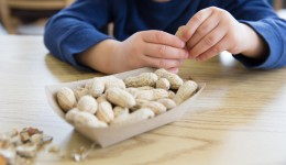 Parenting tips for kids with food allergies