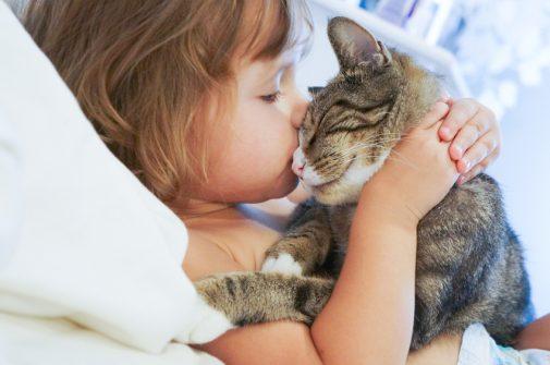 Rising concern for cat scratch disease