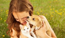 Should you let your dog lick your face?