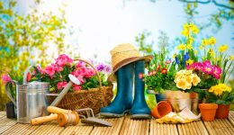 6 tips for raking in the physical benefits of yard work