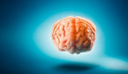 This common habit may literally be shrinking your brain