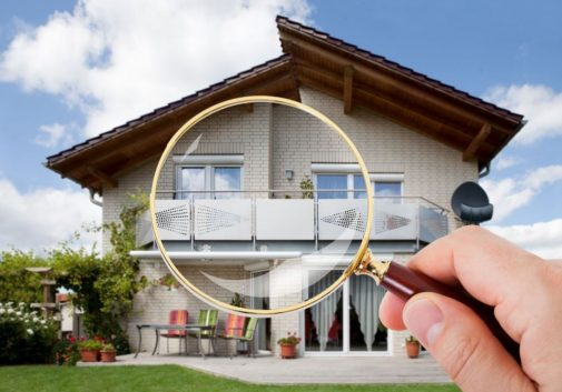 Do you know what's living inside your home?