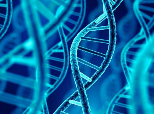 Your genetics hold an untold story