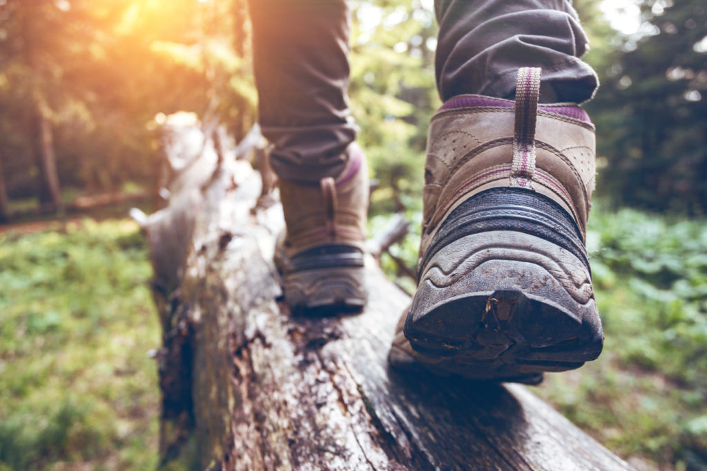 6 ways to better to appreciate nature, even from a distance