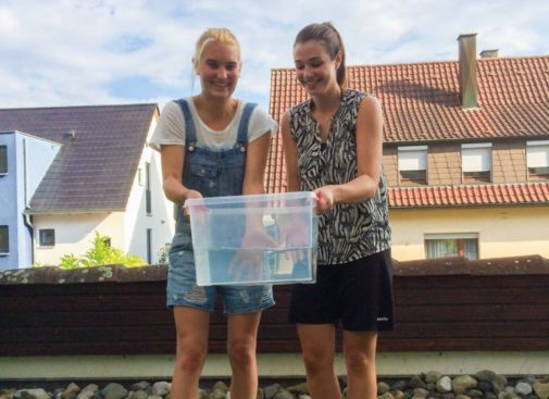 The ice bucket challenge was more than a social media craze